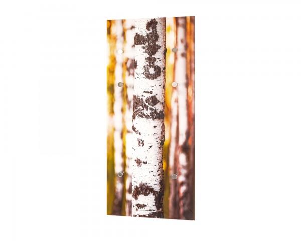 Wandgarderobe Motiv Sicherheitsglas Print Edelstahloptik 6 Haken Glas Metall